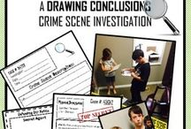 Grade 6: Evidence and Investigation