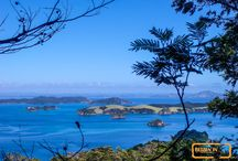 Northland - New Zealand / Het noorden van Nieuw-Zeeland is met haar subtropische klimaat heerlijk en ontspannen. Zoals vaker in Nieuw-Zeeland lijkt het alsof je even in een heel ander land bent (vergeleken met de rest van Nieuw-Zeeland). Met o.a. de Bay of Islands, Cape Reinga en vele verlaten strandjes is dit één van de mooiste gebieden van Nieuw-Zeeland.   Lees hier het reisverhaal dat hoort bij deze foto's: http://reizenin-nieuw-zeeland.nl/het-noorden-van-nieuw-zeeland-2/