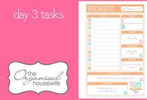 organization  / by Caitlin Shaughnessy
