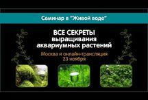 Aquarium tutorials