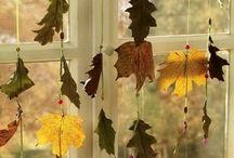 Flora & Fauna - autumn