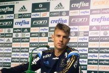 Palmeiras / Notícias Palmeiras