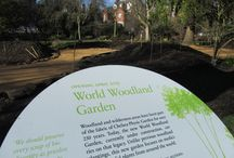 World Woodland Garden / Opening on April 1st the World Woodland Garden will focus on medicinal and useful plants from forest environments around the world. Watch the progress of the new Garden's creation here.