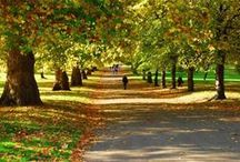London's Parks / London's parks and outdoor spaces where there are loads of things to do and see.