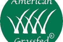 American Grassfed Beef / by Eren Hays