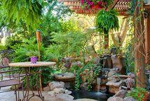 A Garden Style / by MyMindMaps