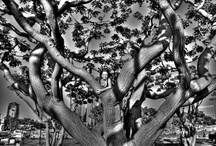 Monochromatica / Black and white photos, monochromes and low color photos.