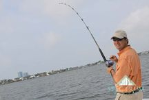 Gone Fishing / Every year, Alabama hosts many local, regional and national fishing tournaments. Alabama has access to the beautiful waters of the Gulf of Mexico from Mobile and Perdio Bays. There are freshwater and saltwater fishing opportunities within the rivers and the inshore and offshore saltwaters of the Gulf of Mexico.  / by Spectrum Resorts