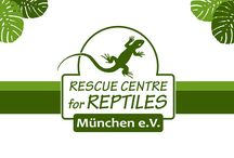 For our ENGLISH-speaking followers / The Reptile Rescue Centre in Munich, Germany is a charitable NGO, founded in 2001. With a yearly average of 1.200 rescued animals we are Germany's largest rescue centre for exotic pets.