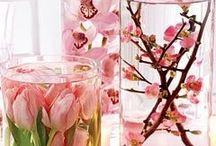 flower arrangements / by Christl Weirich