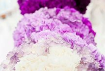 Wedding Flowers / by Emily Peterson