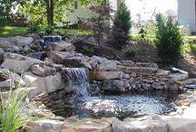 my pond for my ducks