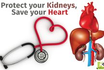 Herbal Remedies for Kidney Problems