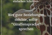Giraffen Sprache