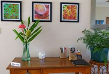 Accommodation Photos / Discover a little about Simba Sunrise Bed & Breakfast