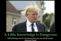 Donald Trump / Funny Donald Trump posters and jokes