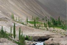 Leh-Ladakh