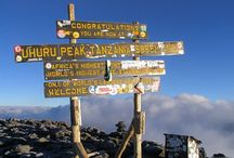 Kilimanjaro / Drink it or climb it. All related to Kilimanjaro mountain.