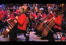 Sinfoniaorkesteri