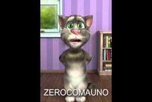 Gato Tom