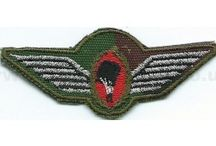 Military Parachute Jump Wings