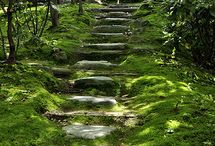 """pathways, """"olen polkuni päässä, tuhansistani erään..."""""""
