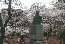 101 Reasons Why I Love Meguro / Great Meguro Spots