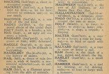 Halloweenie...... / by Cathy Mackey