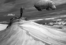 # Artist - Dariusz Klimczak / The multi-award winning Dariusz Klimczak, born in 1967, who graduated from art school in Zduńska Wola, Poland, has been photographing for over 30 years and more recently focusing on photomontages. He has extensively exhibited internationally and sold his works across three continents. He has been able to hone his artistic skills drawing from being a painter, journalist and drummer in a rock band.