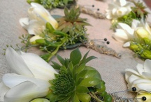 Boutonnieres Buttonholes and Bouts / Boutonnieres, Buttonholes and Bouts - Lapel Flowers for men and women, using our native Australian foliages and flowers. Wear them for weddings, race days and special events!