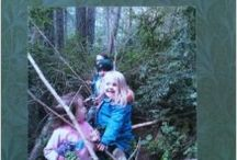 Teaching Ideas - Outdoor Learning