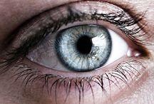 Augen