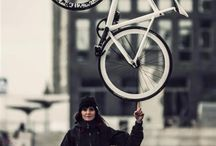 Pignon Fixe / all about fixed gear
