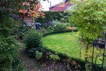 De Buitenhof / Planten en bloemen voor buiten.