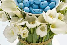 Hollyday-Easter