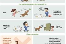 How Kids & Dogs Should Interact / Kids and Dogs