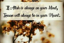 Islamic Quotes / islam is the best.......u can share as many as u can......and get more knowledge about islam........share only islamic quotes... if u want to collaborate u can just follow the board.....n plzz don't make any kind of section.. save on Islamic Quotes section plzzzzz