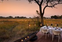 My favourite Safari Lodges