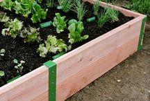 Tuin en planten, binnen en buiten.