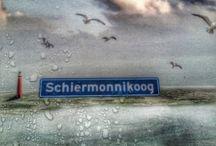 Eilandhoppen Schiermonnikoog
