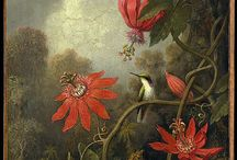 Martin Johnson Heade / Art