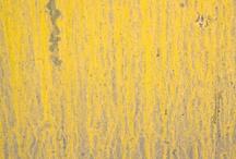Art / Texture