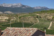 Pequeño tour por la Rioja y Donostia España