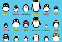 Penguing