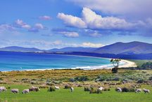 Tasmania, Australia / For trip itinerary, budget, and tips, read more at   http://www.thetravelling3o.com/2014/10/discover-melbourne-and-tasmania-in-8_84.html