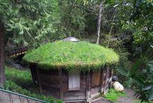 Shelter/laavu
