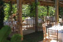 weddings under a pergola