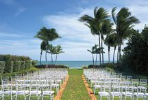 Wedding Spots / Great locations & destinations to have the wedding of your dreams!