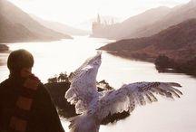 I Love Potter!