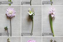 Virágos fejdíszek